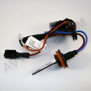 Sigma Pro H11 5000K